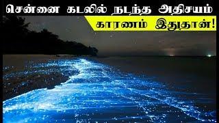 சென்னை கடலில் நடந்த அதிசயம் - காரணம் இதுதான் | Blue waves in chennai