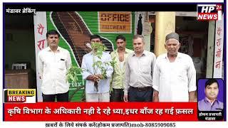 कृषि विभाग के भ्रस्ट अधिकारियों की अनदेखी के चलते किसानों की फ़सल रह गई बांझ
