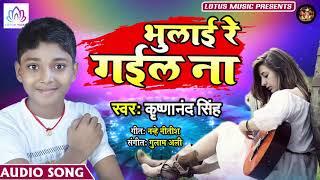 भुलाई रे गइले ना   Krishnanand Singh (2019) का सबसे बड़ा AUDIO SONG   New Bhojpuri Hit Song
