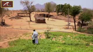 Heart Touching Story ! गौ माता - Gau Mata -  Short Film ! Silent Short Movie