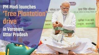 PM Modi launches 'Tree Plantation' drive in Varanasi, Uttar Pradesh