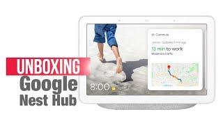 Google Nest Hub: Voice assistant gets a smart display at Rs 9,999 | Google Nest Hub vs Echo Show 5