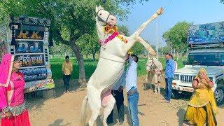 Dj Wala Gano Laga Re Shaadi Ko || डी जे वाला गानो लगा शादी को || Latest Rajasthani Video