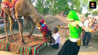 Dj Wala Gano Laga Re Shaadi Ko || डी जे वाला गानो लगा शादी को || Maina™