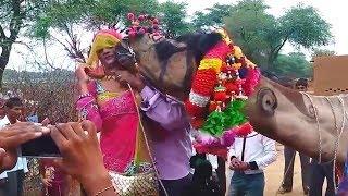 छज्जे ऊपर बोयो री यबाजरो खिल गयो फूल चेमेली को    Chajje upar Boyo Ri Bajro khil by Bhawar Khatana2