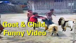 Goat and Child Very Funny Video 2017 || Comedy In Dehat