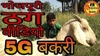 Bhojpuri comedy | 5G बकरी | Naveen Raj Chauhan |
