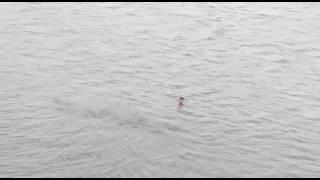 गाॅव के नदी में डूबता हुवा बच्चा, देखीये कैसे बचता है| please subscribe my channel YELLOW PAGE MOVIE