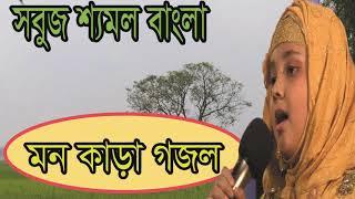 New Best Islamic Bangla Gojol 2019 | সবুজ শ্যমল বাংলা । মন কাড়া বাংলা গজল । Gojol | Islamic BD