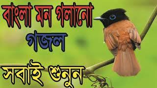 Heart Touching New Bangla Gojol | Best New Year Islamic Song | বাংলা মন গলানো গজল । Islamic Bd