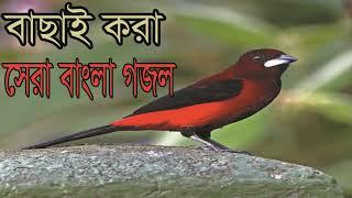 New Year Bangla Gojol | বাছাইকরা সেরা বাংলা গজল । বাংলা ইসলামিক সংগীত । Best Gojol | Islamic BD