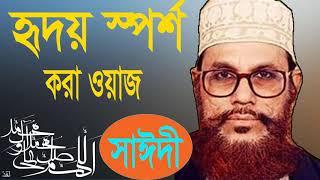 Allama Delwar Saidy Bangla Waz   Bangla Waz Mahfil 2019আল্লামা সাঈদীর হৃদয় ছোয়া ওয়াজ । Islamic BD