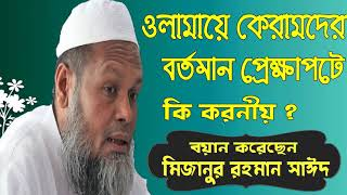 Mizanur Rahmna Said New Bangla Waz | Best Bangla Waz MAhfil 2019 | Islamic Bangla Waz Mizanur Rahman