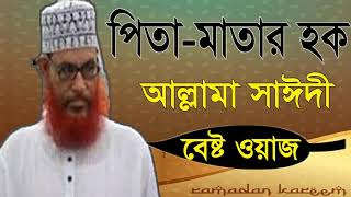 Bangla Waz Mahfil 2019 | Islamic Bangla Waz Saidy | Allama Saidy New Bangla Waz Mahfil | Waz Bangla