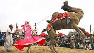 Superhit Rajasthani video Song || गोरीन ते - Gorin Te || Latest Rajasthani Video 2019
