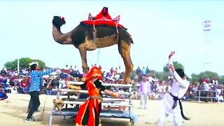 New Rajasthani Video Song || घड़ी घड़ी - Ghadi Ghadi || Maina