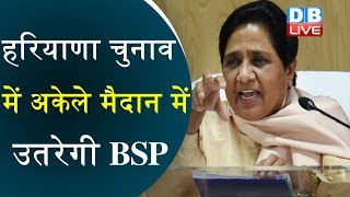 हरियाणा चुनाव में अकेले मैदान में उतरेगी BSP | चुनाव से पहले BSP ने JJP से तोड़ा गठबंधन |