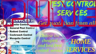 PUNE   Pest Control Services ~ Technician ~Service at your home ~ Bed Bugs ~ near me 1280x720 3 78Mb