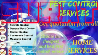 SURAT   Pest Control Services ~ Technician ~Service at your home ~ Bed Bugs ~ near me 1280x720 3 78M