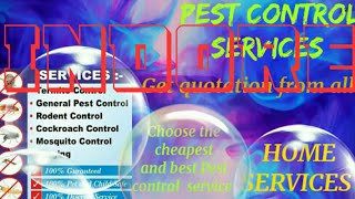 INDORE    Pest Control Services ~ Technician ~Service at your home ~ Bed Bugs ~ near me 1280x720 3 7