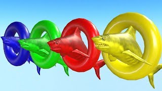 Learn Colors With Animals - Shark Playing In Colorful Water. Videos para niños.