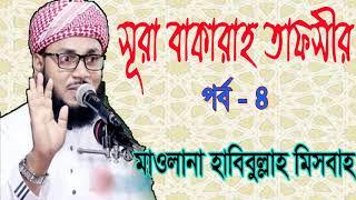Mawlana Habibullah Misbah Waz Mahfil | Downlaod Bangla Waz 2019 | সূরা বাকারাহ তাফসীর পর্ব- ৪