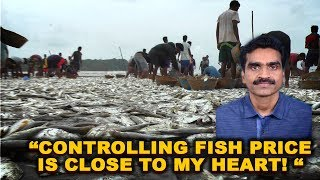 Controlling Fish Price is Close To My Heart! - Filipe Nery
