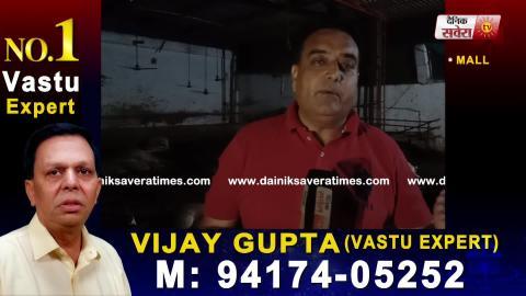 जानिए किस वजह से Patiala के Rajpura में 33 Cows की हुई Death