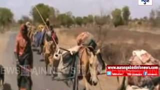 Aurangabad : शेळ्या-मेंढ्या पालन करणाऱ्या धनगर समाजासंदर्भात AIN न्यूजचा विषेश रिपोर्ट