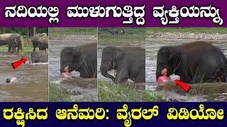 ನದಿಯಲ್ಲಿ ಮುಳುಗುತ್ತಿದ್ದ ವ್ಯಕ್ತಿಯನ್ನು ರಕ್ಷಿಸಿದ ಆನೆಮರಿ: ವಿಡಿಯೋ || Top Kannada Tv