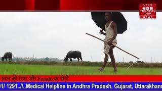 किसानों को नहीं दी गई तीसरी किस्त उत्तर प्रदेश में किसान मोदी जी के जन्मदिन पर गिफ्ट
