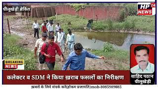 राजगढ़ कलेक्टर व SDM ने किया ख़राब फसलों का निरीक्षण