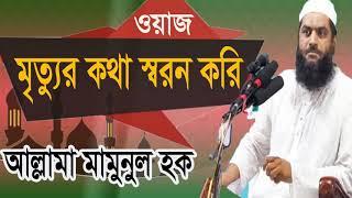 new Islamic Bangla Waz 2019 | মৃত্যুর কথা স্বরণ করি। বাংলা ওয়াজ আল্লামা মামুনুল হক | Islamic BD