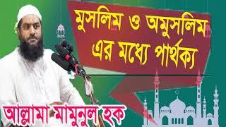 Best Bangla Waz | মুসলিম ও অমুসলিম এর মধ্যে পর্থক্য। বাংলা ওয়াজ আল্লামা মামুনুল হক | Islamic BD