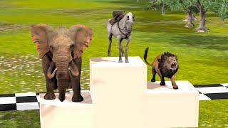 Animales salvajes corriendo carrera en la selva - Videos Para niños