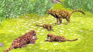 Animal salvaje y sus hijos y aprendizaje familiar - Videos Para niños.
