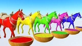 Los animales de granja - Caballo bebiendo jugo colorido y colores cambiantes - Para niños