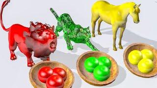 Animales salvajes comiendo manzana y cambiando colores - Videos Para niños