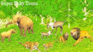 Animales Salvajes y sus crías jugando - Videos Para niños
