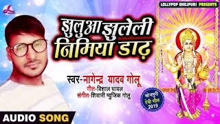 झुलुआ झुलेली निमिया डाढ़ | Nagendra Yadav Golu | Bhojpuri Navratri Song | Jhuluwa Jhuleli Nimiya Dhad