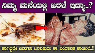 ನಿಮ್ಮ ಮನೆಯಲ್ಲಿ ಜಿರಳೆ ಇದ್ಯಾ…? ಹಾಗಿದ್ದರೇ ನಿಮಗೂ ಬರಬಹುದು ಈ ಭಯಾನಕ ಕಾಯಿಲೆ…!! || Top Kannada TV