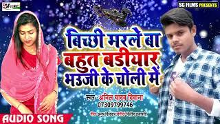 #बिच्छी मरले बा बहुत बडियार भउजी के चोली में - Anil Yadav Deewana का सबसे Hit Song 2019