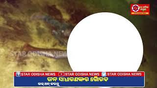 Star Odisha news