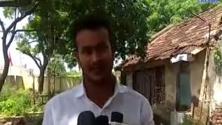 Bagasra | Birth of calves by sex sorted semen dose| ABTAK MEDIA