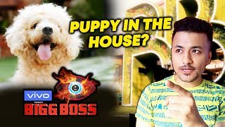 A Puppy Will Enter House With Contestants In Bigg Boss 13 | Salman Khan's Show