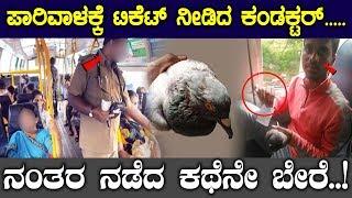 ಪಾರಿವಾಳಕ್ಕೆ ಟಿಕೆಟ್ ನೀಡಿದ ಕಂಡಕ್ಟರ್ .. ನಂತರ ನಡೆದ ಕಥೆನೇ ಬೇರೆ ..! || Top Kannada Tv