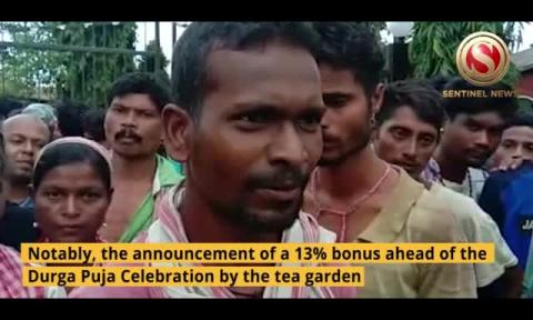 Uproar at Badalabeta Tea Estate, Garden workers staged protest