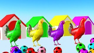 Los animales de granja se transforman en animales coloridos que juegan con la pelota - Para niños.