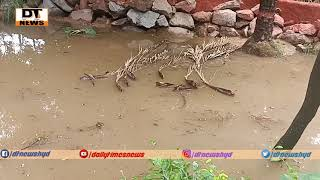 Zoo Closed On Friday Due To Heavy Rain | Instant Repairs Made By Zoo Officials | Nehru Zoological