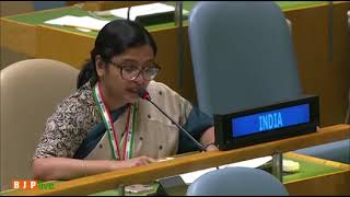 Pakistan's minority has shrunk from 23% in 1947 to 3% today - India's reply at UNGA